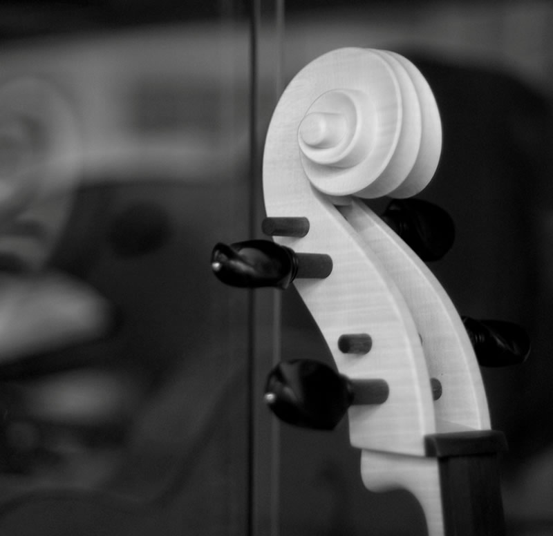 handmade violin luthier