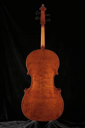 Cello Falaschi 2020