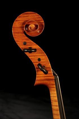 cello Falaschi.jpg