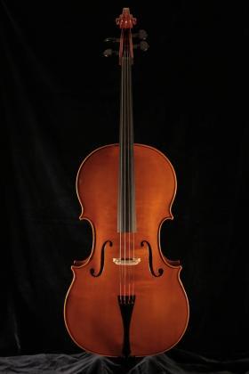 Falaschi 2020 cello.jpg